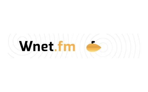 Adwokat dr Joanna Barzykowska dla radio Wnet.fm