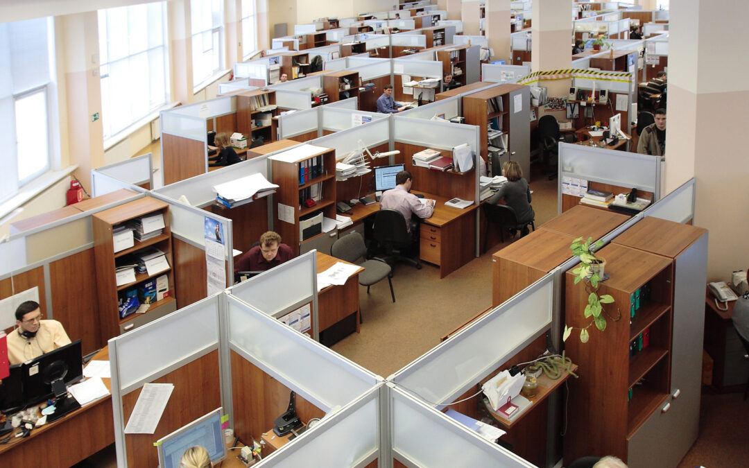 Pracownicze Plany Kapitałowe – zbliżają się ważne terminy